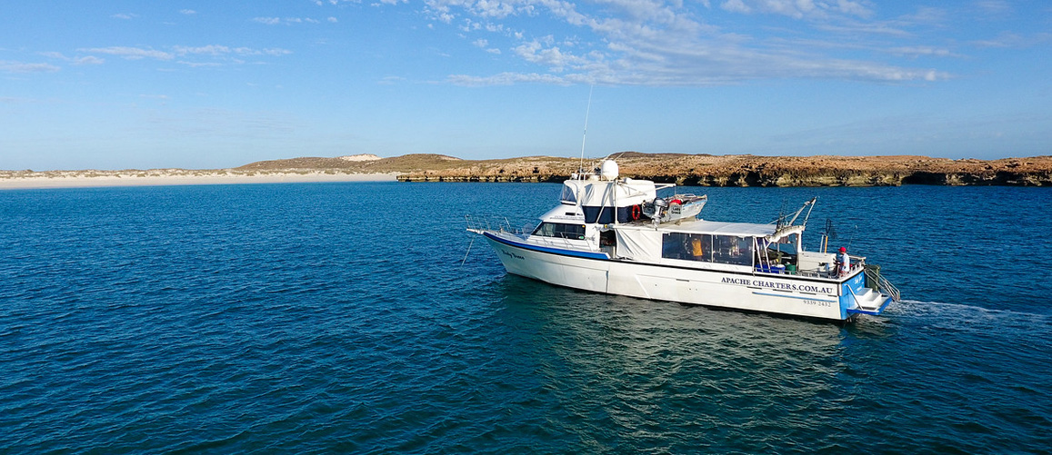 Apache Charters - Fishing Charters Perth - Boat Cruises