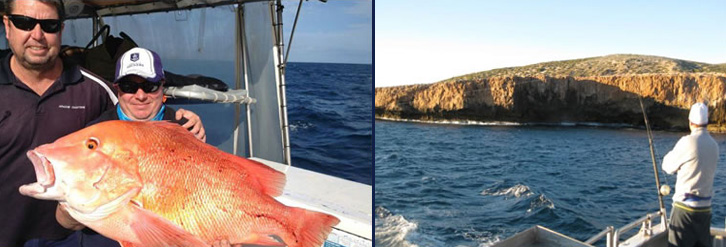 Shark Bay Charters Fishing Images